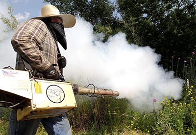 Long Term Effects Of Smoking >> 7 Reasons Why Fogging Will Not Kill The Mosquitoes # ...